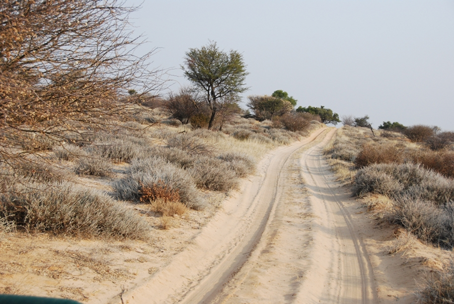 Tranfrontier National Park Botswana Section, Kaa Wilderness Trail