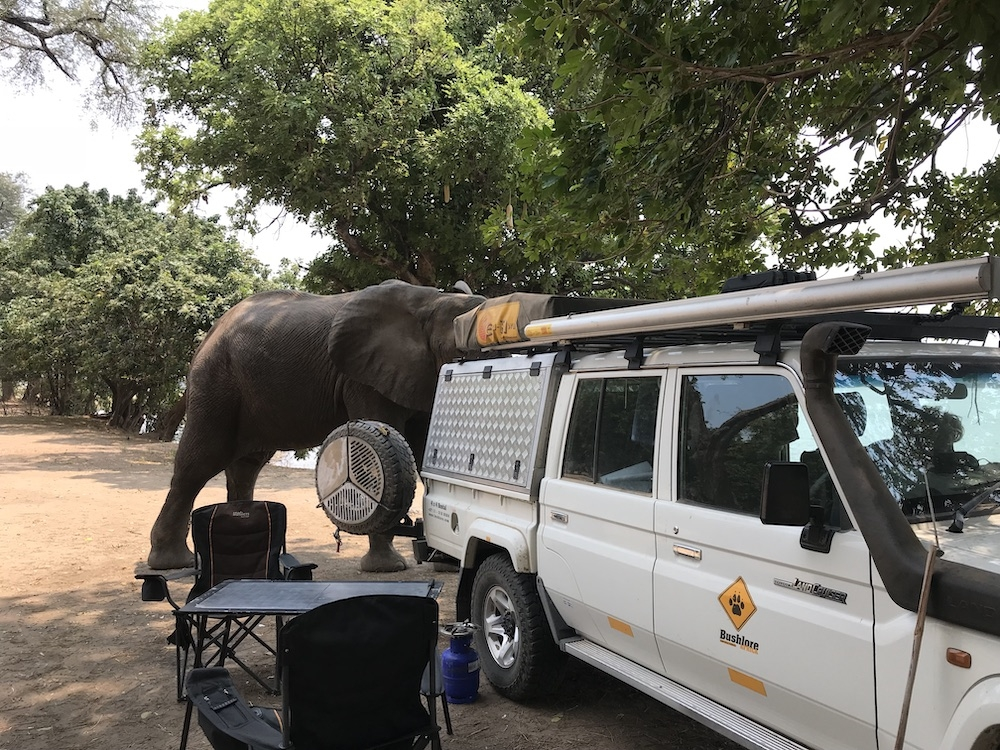 Mana Pools National Park Nyamepi Camp
