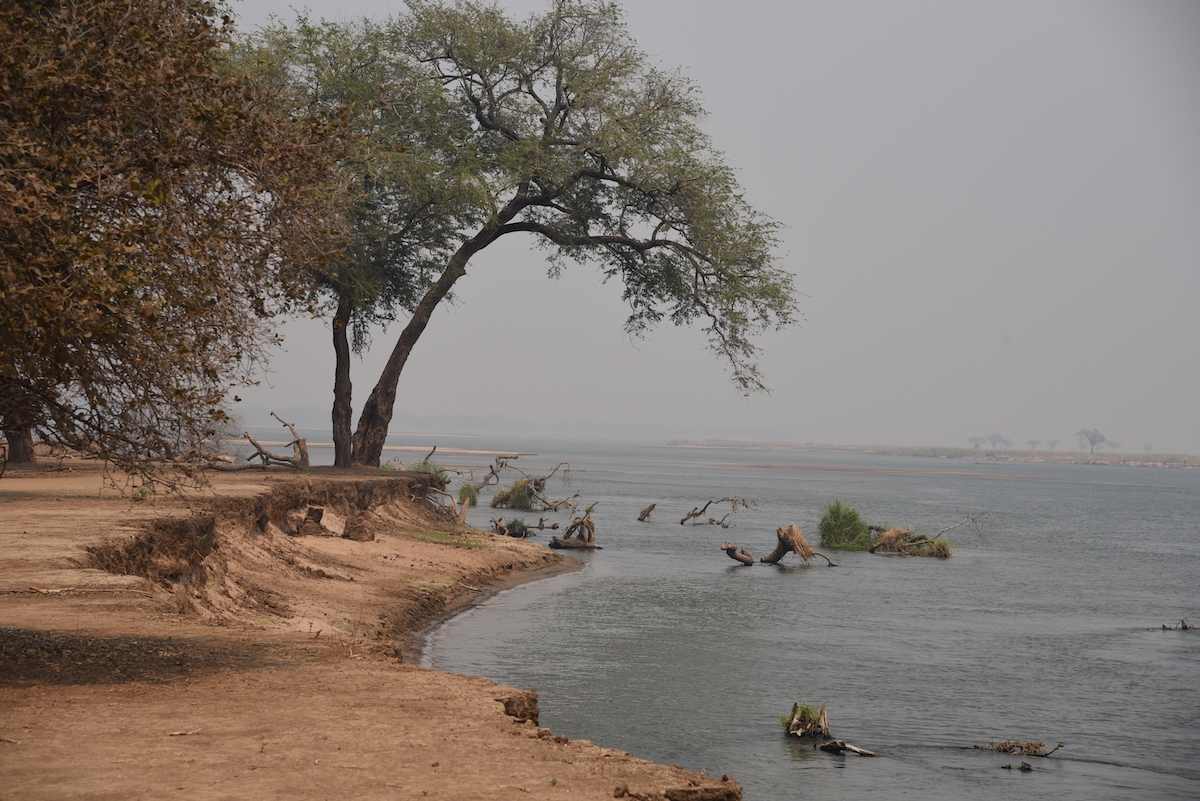 Rive dello Zambesi al Mana Pools National Park